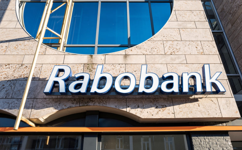 What Is Rabobit?
